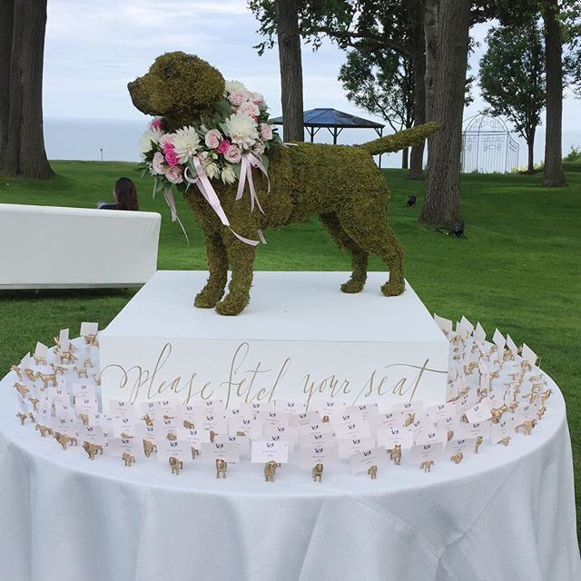 """#Escort_Card A topiary dog in honour of the bride and groom's two pups. Signage on the platform for guests to """"Please Fetch Your Seat"""" and what seemed like a million tiny gold dog card holders that I spent all week spray painting and cutting card slots into."""