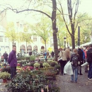bloemenmarkt Janskerkhof
