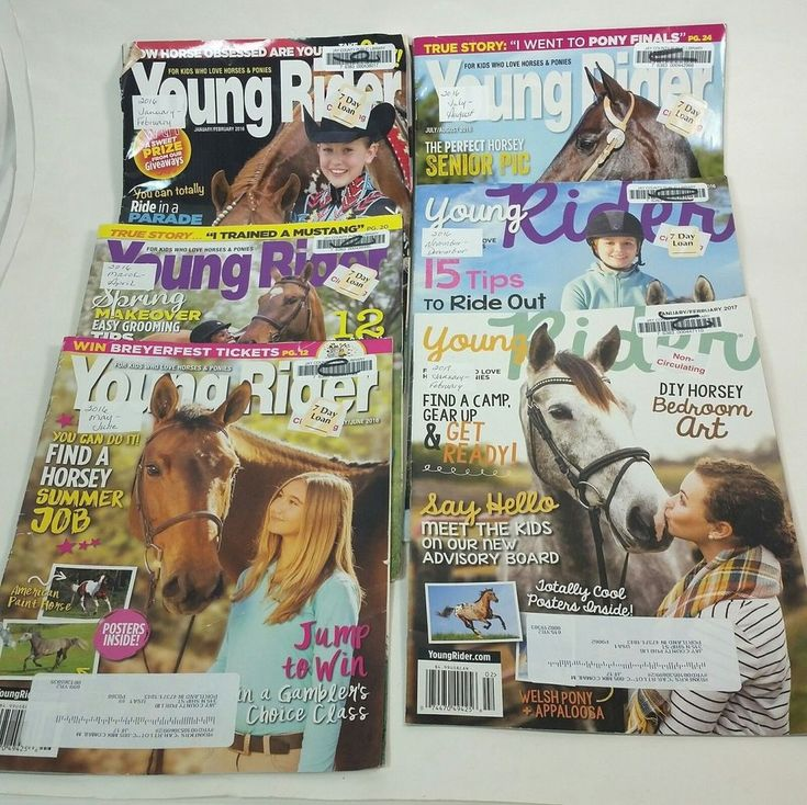 Young Rider Horse Magazine LOT Of 6 Back Issues Riding Grooming Jumping Tips | Books, Magazine Back Issues | eBay!