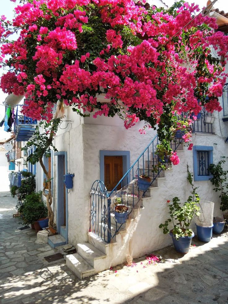 Skiathos, Greece May 2015:Best holiday we've had . Lovely people, food ,weather , just one big chill out, loved it...2017 May Just come home from Skiathos, it was lovely, so sorry to leave...