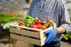 Subsistence Farming How to Grow Your Own Food, and Nothing More | Try Many Types Of Farming For You And Your Homestead