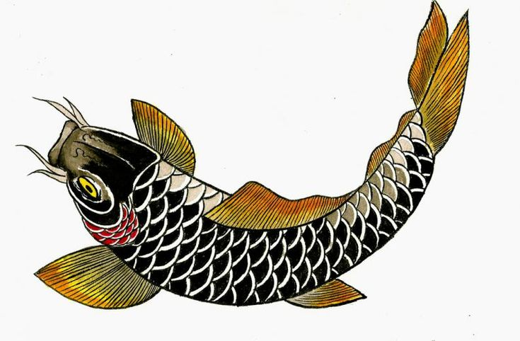 M s de 1000 ideas sobre tatuaje pez koi en pinterest for Peces koi baratos