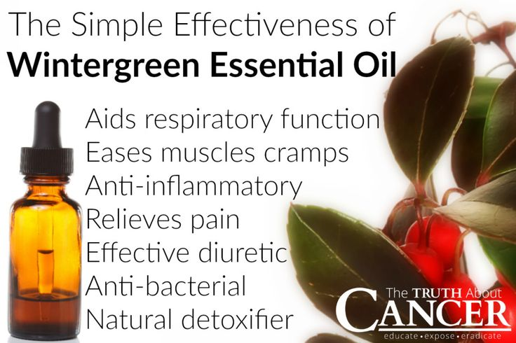 Do you use wintergreen oil or any other essential oils for good health or cancer prevention? Fight pain, lower inflammation, and shrink tumors with wintergreen essential oil you're going to love! Click through and read more! // The Truth About Cancer