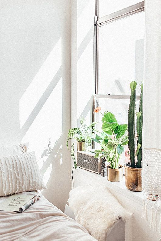 cacti in gold pots in nys window   sfgirlbybay. Best 25  New york bedroom ideas on Pinterest   Dream apartment
