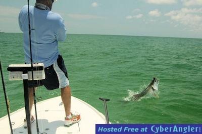 CyberAngler Photo Gallery - Cliff Ondercin's Sarasota DOA Baitbuster tarpon jump - with Capt. Rick Grassett