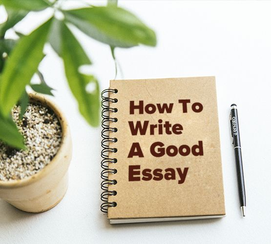 How to write a good commentary for essays of elia