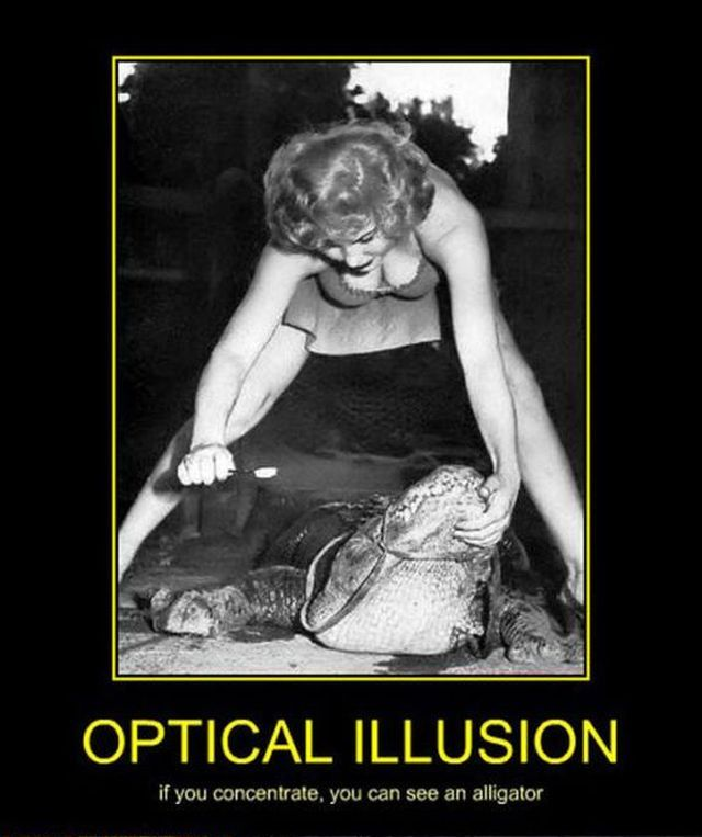 81 best images about OPTICAL ILLUSIONS on Pinterest | 640 x 763 jpeg 54kB