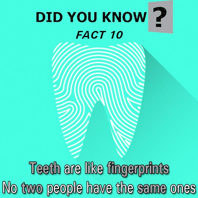Here are 10 facts about teeth I bet you never knew…  Number 10. Teeth are like fingerprints. No two people have the same ones, and, as anyone who's ever watched Law & Order knows, that makes dental records a valuable investigative tool.   Visit our website for more info. Link in bio.