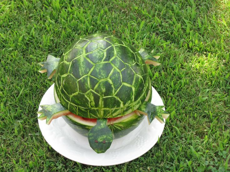 turtle birthday party - Google Search