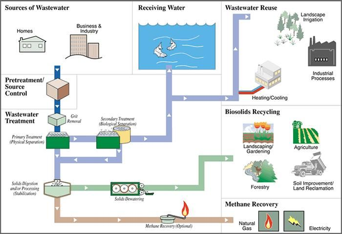 waste water treatment dissertation