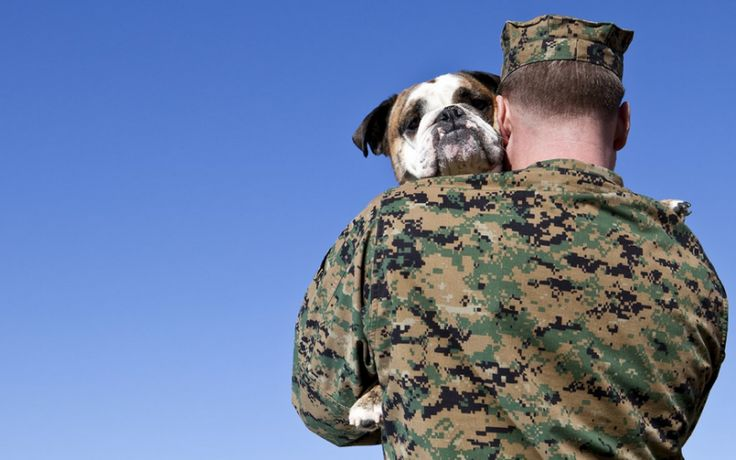 Virginia Veterans To Be Offered Free Pet Adoptions