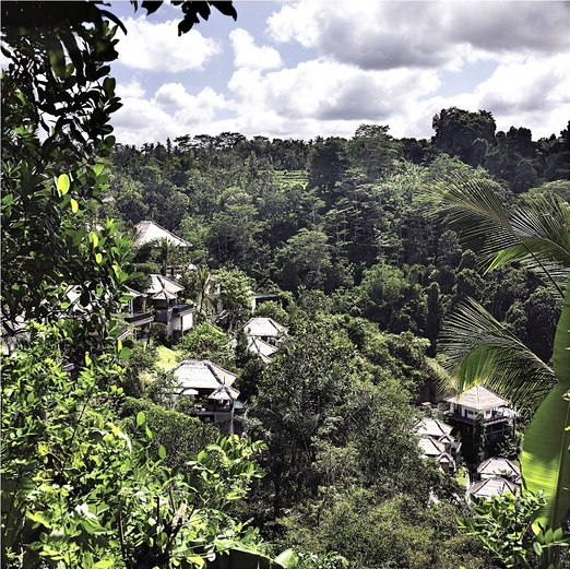 The green landscape surrounding the Ubud Hanging Gardens is what you need for a nice natural wedding. Photo courtesy of ...