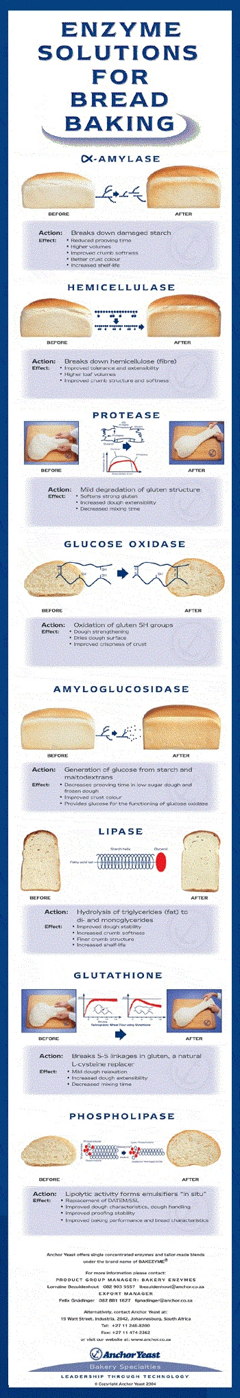 #Bread #enzymes, and what they do.  From an 'Anchor Yeast' poster, which I edited on MS Paint to make an #infographic.