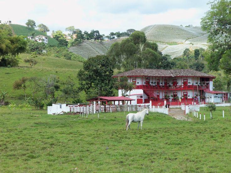 finca ganadera en santa rosa de cabal near Chinchina