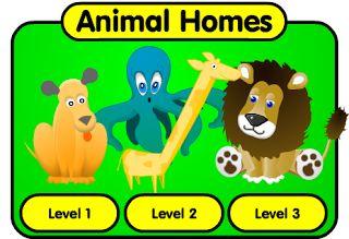 ¿ Donde viven los animales ?   Educación Infantil Colegio José Calderón