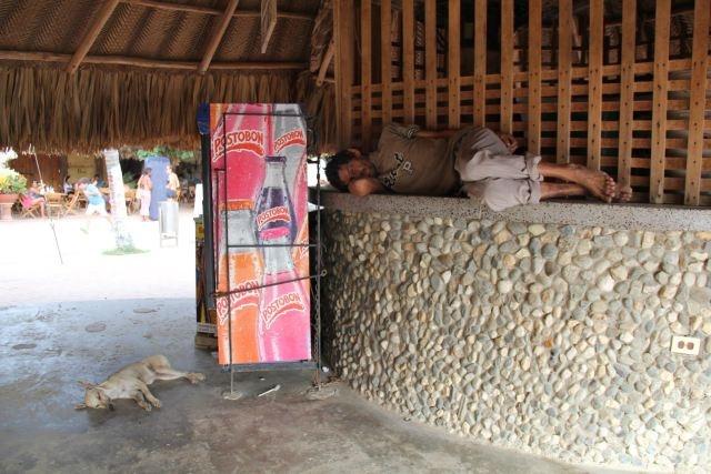 Título: Tranquilo jefe Lugar: Santa Marta, Colombia Autor: Alejandro Martínez Texto: Tranquilo jefe ... descanse ... yo vigilo
