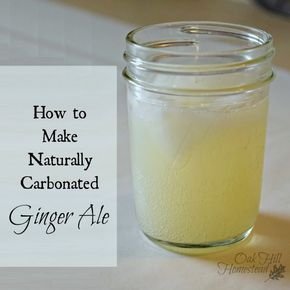 How to make naturally-fermented ginger ale