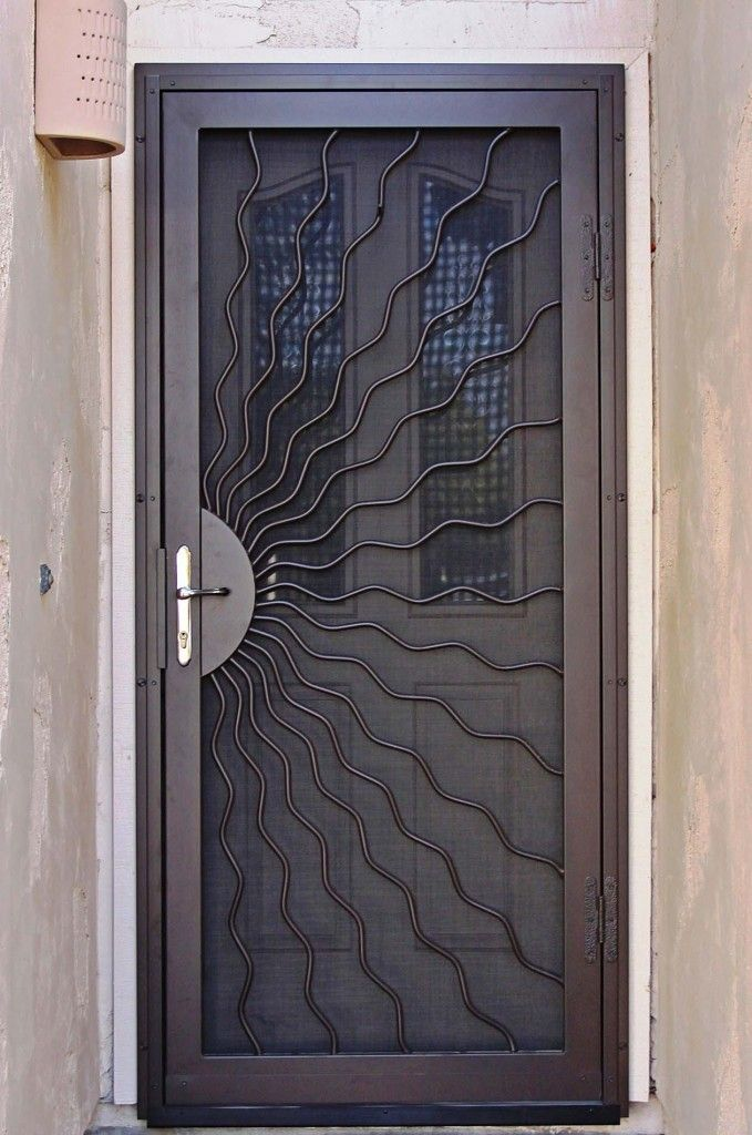 Single Security Door Panel With Unique And Artistic Crafts Storm