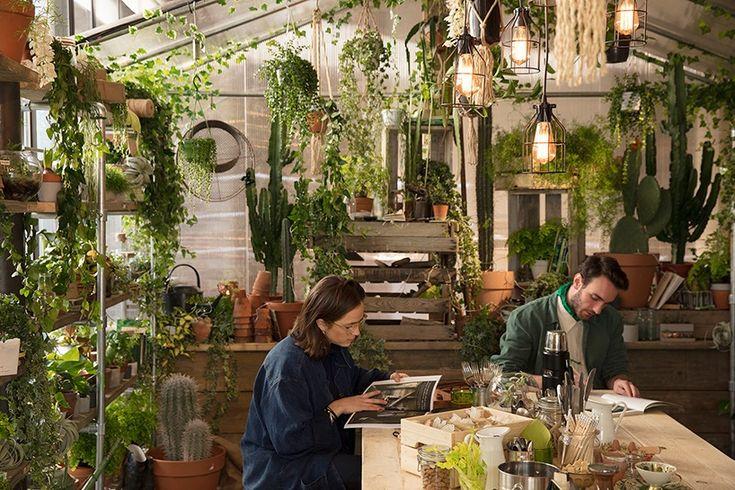Dzięki Airbnb będziemy mogli zamieszkać w domu, którego motywem przewodnim jest kolor roku 2017 - Greenery. Wyjątkowe lokum powstało we współpracy z Pantone w londyńskim Clerkenwell.