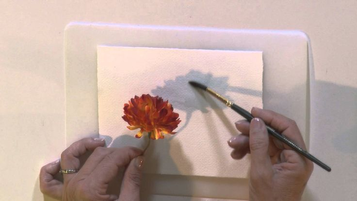 Watercolor for Beginners Tips for Shadow Painting with Jan Fabian Wallake