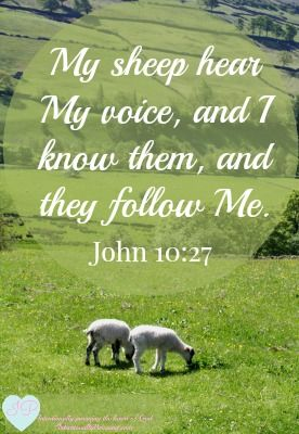 """John 10:27 says the sheep """"... hear and are listening to My voice ..."""" We can't listen to God's voice if we don't quiet ourselves and our world. We can't ..."""