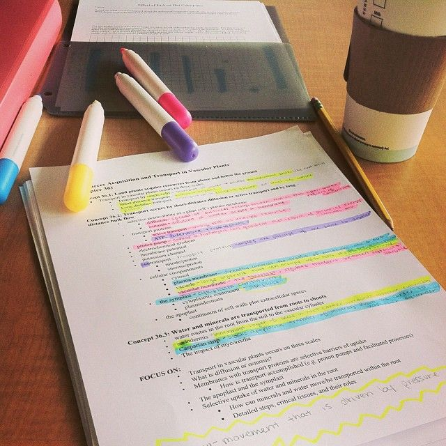 How I Color Code My Bible + A Free Printout to Show You How