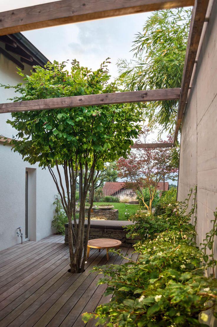 37 best b ume und str ucher images on pinterest - Gartengestaltung asiatisch ...