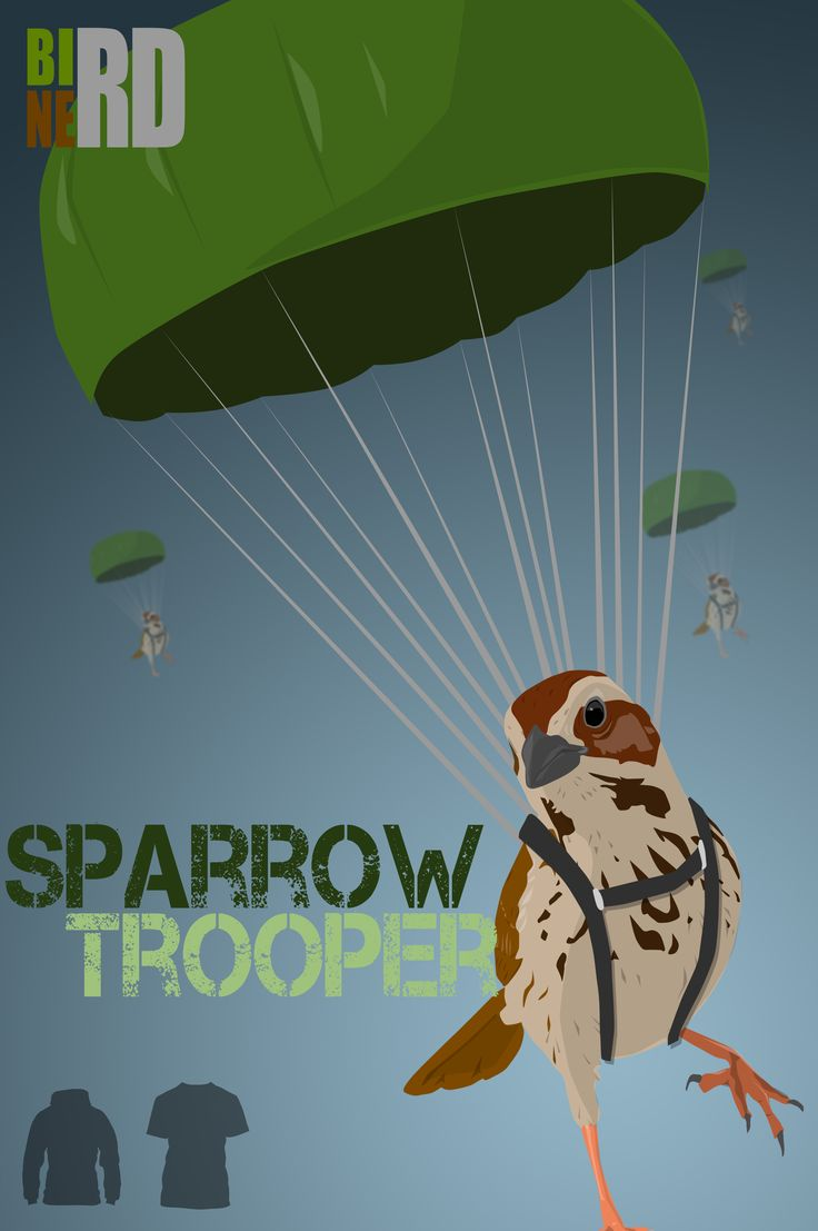 Sparrowtrooper, show the Bird Nerd in you with this funny bird pun tee shirt