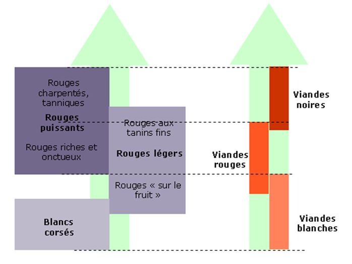 Petit cours sur les accords mets et vins : Comment accorder la VIANDE et le VIN