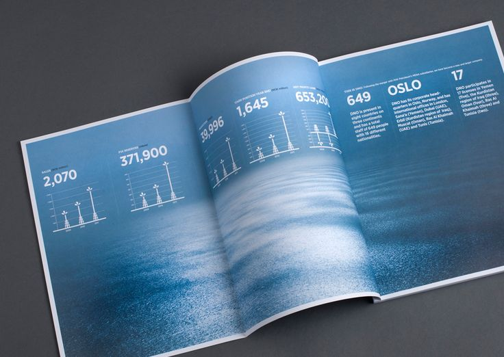 DNO annual report 2012. Pinned from www.redink.no.
