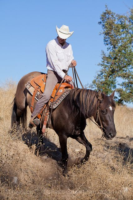 Cowboys ❦ paint-horse-dreamin:  Paso Robles Horse Ranch 34