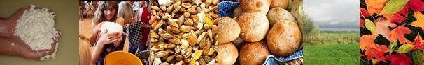 Activiteiten voor kinderen » Hoeve Wielrevelt broodjes bakken, pannenkoeken bakken boven kampvuur, wie heeft het eerste vuur gemaakt?  voor een avontuurlijke wandelroute in de buurt bestel je hier ook je lunchpakket