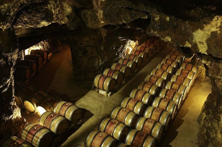 Route des vins de Touraine : Touraine, entre vignobles et châteaux - Linternaute