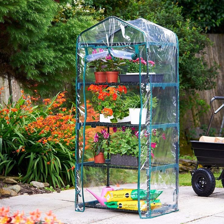 4 Tier Greenhouse Mini #Outdoor #Garden #Plants #Growhouse With Reinforced PVC Cover #4Tier #Greenhouse #flower #uk #sales #gardening #house
