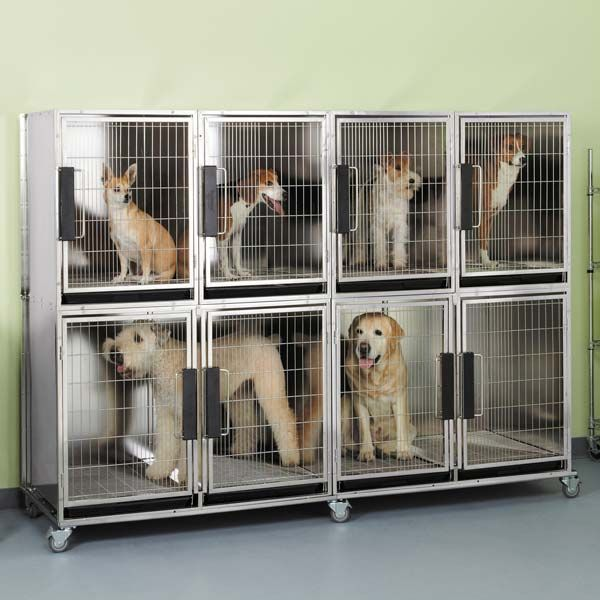 Dog Cages For Grooming Salon
