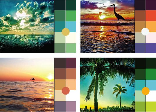 Tropical Colors For Home Interior: 35 Best Palettes From Our Artwork Images On Pinterest