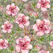 Rosa flores. Papel tapiz floral sin fisuras. Watercolour arte sobre fondo gris