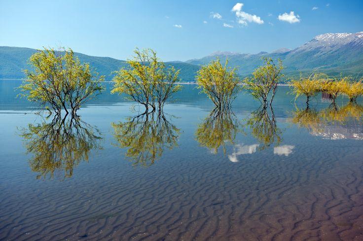 Prespa lake, Greece.