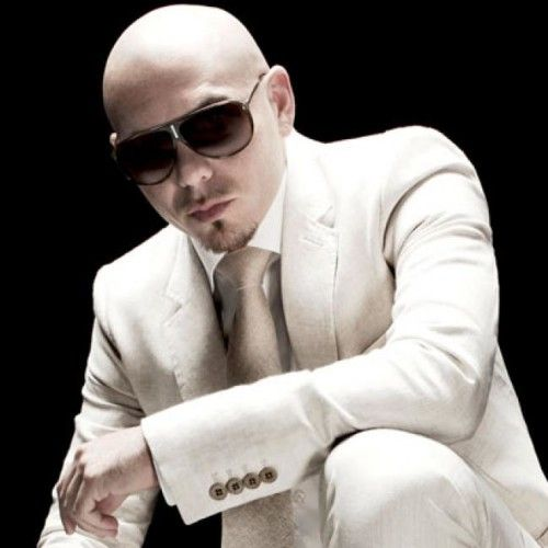 Image result for pitbull artist