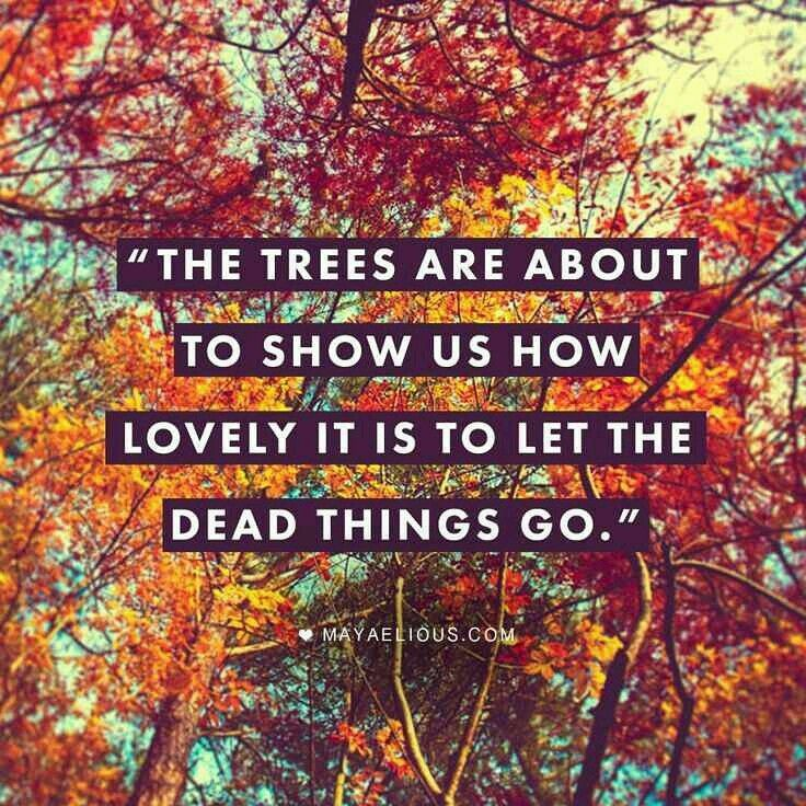 Quotes About Love: 25+ Best Autumn Love Quotes On Pinterest