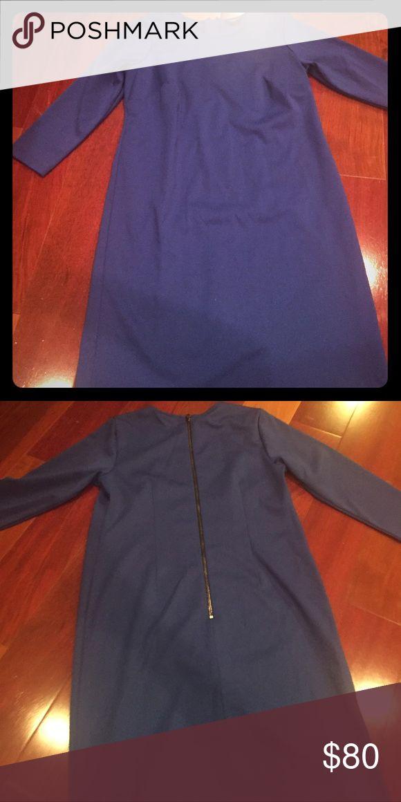 Women's Ann Taylor long sleeve cobalt blue dress Women's Ann Taylor long sleeve cobalt blue dress 6 petite knee length zips up back Ann Taylor Dresses Mini