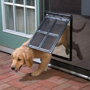 #PinMyDreamBackyard Doggie door OMG we sooo need this. #Pinmydreambackyard