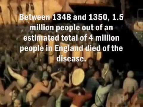 the history and cause of the bubonic plague  genomes that suggest a bronze age origin for bubonic plague  the bubonic  plague and is ancestral to the strain that caused the black death.
