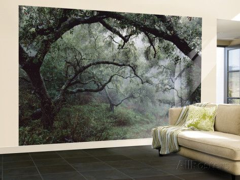 Wall Mural Posters 140 best house ~ art for walls images on pinterest | home, wall