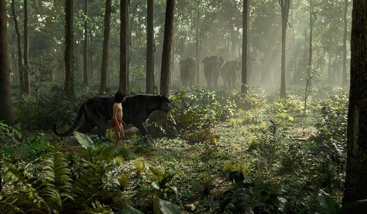 Книга джунглей - (Л-Р) Маугли и Багира. ©2016 Дисней Предприятий, Инк. Все Права…