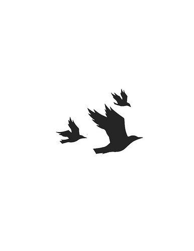 Flying Birds - Nikki McClure
