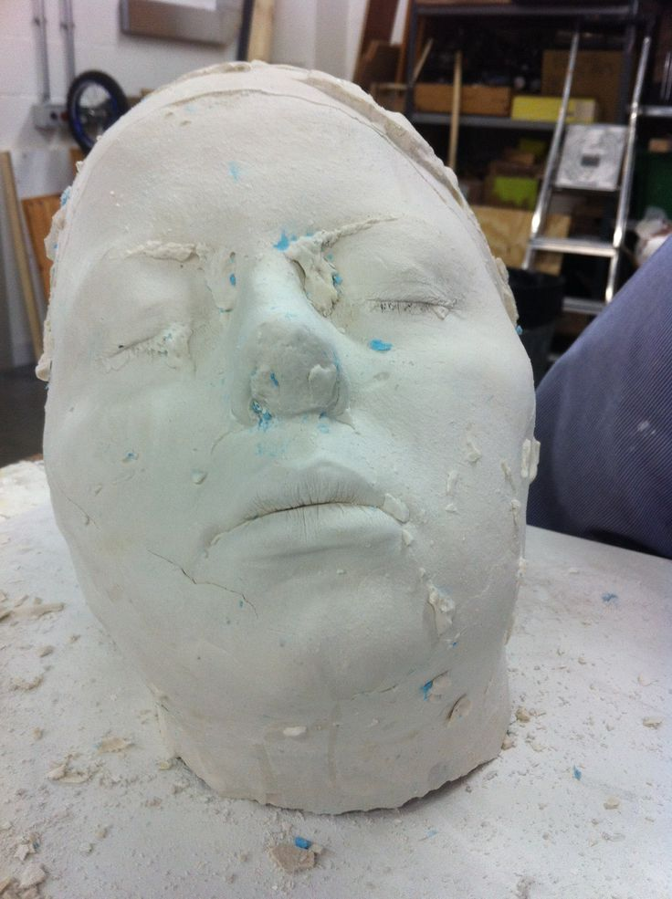 My full head cast of flat mate. Improvement needed on back of head!