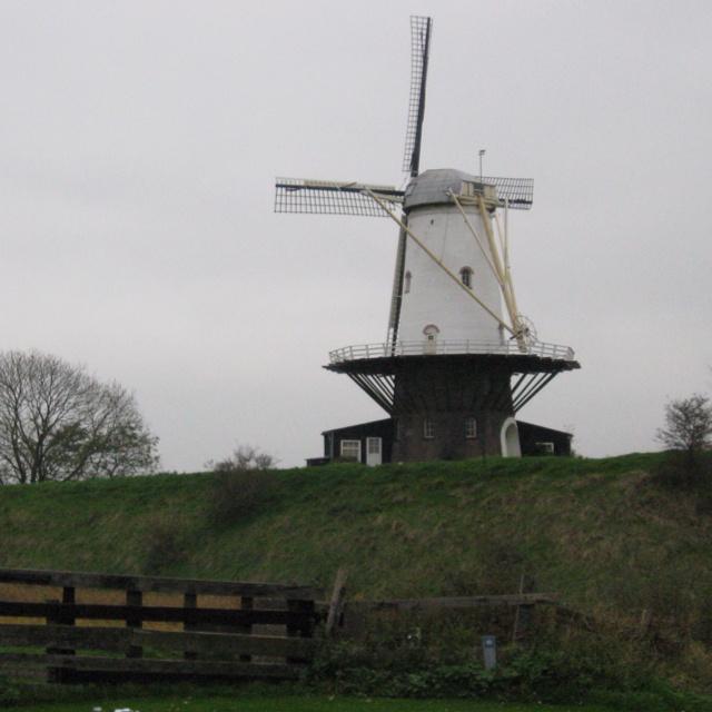 Nederlandse Molen  (Dutch Windmill)   Veere, Zeeland, Holland
