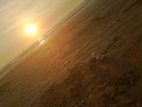 Mindell beach!