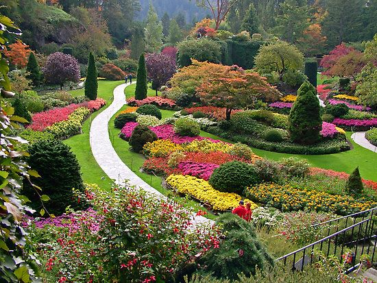 36 best all the pretty flowers images on pinterest beautiful butchart gardens victoria bc thecheapjerseys Images